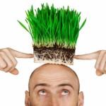 имплантация искусственных волос